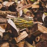 Czy warto kupić drewno w tartaku?