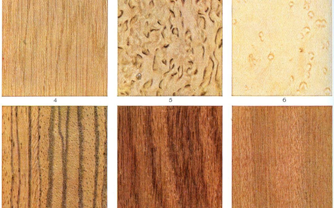 Jak kupić dobre drzwi drewniane – poradnik